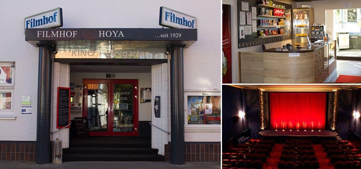 Hoya Kino